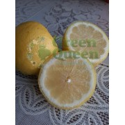 Лимон Уваровский